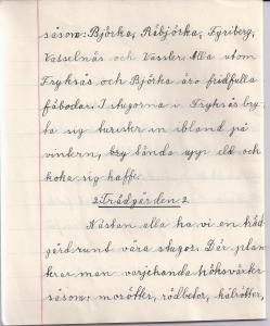 Uppsats av Bogga Anna Andersson 1932 (sida 4)