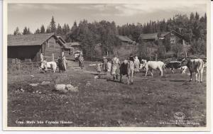 Maj-Övre fjösbacken, ca 1938-39