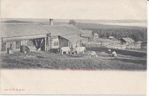 Jansen-gården (241-5)