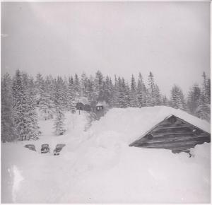 Vintern 1951 (250-2)